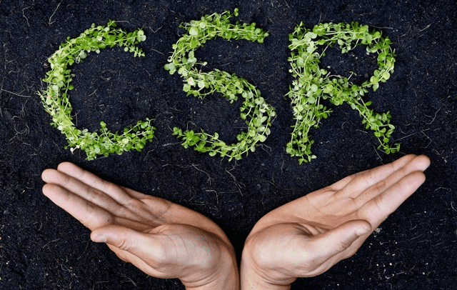 Customer Support in the Trust Economy: The Importance of CSR